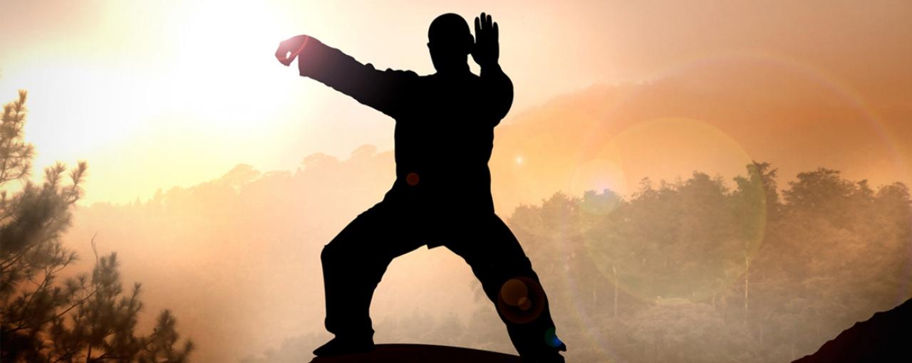 Taiji Daoyin Qi-Gong bergamo