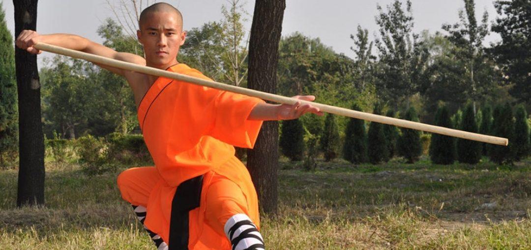 Wushu Kung-Fu – Adulti